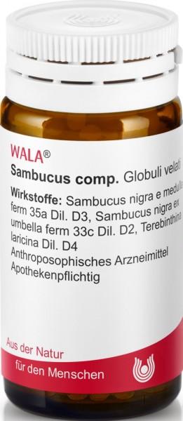 SAMBUCUS COMP  (8787554) Bild-01