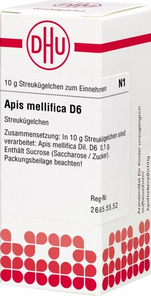 APIS MELLIFICA D 6  (2109876) Bild-01